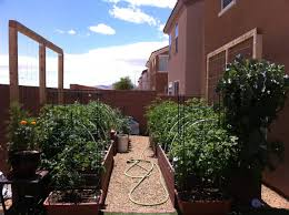 this shows pictures of raised beds in las vegas the beds are