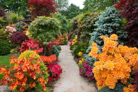 home flower gardens also garden flowers trends images