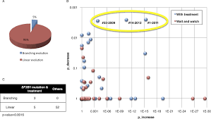 tumor evolutionary directed graphs and the history of chronic