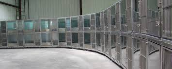 double stack dog kennel designs for max efficiency in boarding