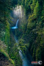 10 waterfalls in oregon that ll get you really beautiful