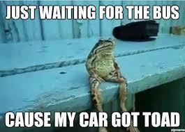 Waiting Meme - sitting frog meme weknowmemes