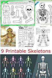 Halloween Skeleton Cut Out by 25 Best Skeleton Craft Ideas On Pinterest Dino Craft Halloween