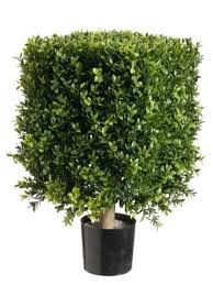 square boxwood artificial topiary in pot tree plant indoor cheap