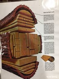 Wood You Furniture Understanding Wood 7 Things You Must Know Before You Build With Wood