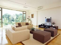 living contemporary home decor ideas sofa tv set living room