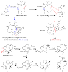marine drugs topical collection bioactive compounds from