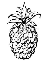 pineapple and sun glasses black sketch cartoon hand drawn