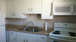 Paint My Kitchen Cabinets White Alluring Kitchen Cabinet Design Ideas Tags Kitchen Ideas Small