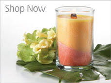 Home Interior Candles Celebrating Home Fragrance Warmers