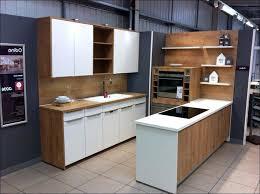 german kitchen cabinet german made kitchen cabinet municipalidadesdeguatemala info