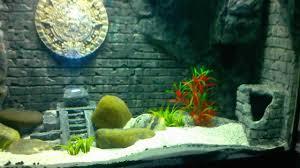 japanese aquascape aquarium decorations background 50 ft aquarium background