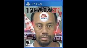Tiger Woods Memes - the best memes of tiger woods dui 2017 less than 1 minute