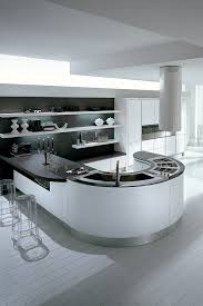 24 best contemporary kitchens designs 24 best modern kitchen cabinet images on contemporary