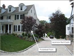 pics of corner privacy landscaping never underestimate the