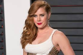 Pay Vanity Fair Amy Adams Knew She Was Being Paid Less For U201camerican Hustle