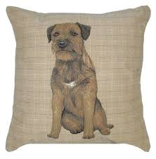 10 best gifts for border terrier owners uk images on