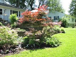 my zen garden soroptimist garden tour