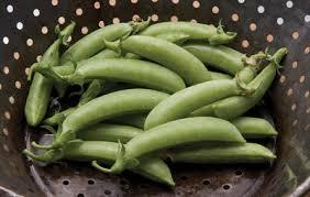 What Vegetables Need A Trellis 10 Best Vertical Growing Summer Garden Crops Rodale U0027s Organic Life
