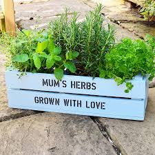 personalised window box crate with herb seeds by plantabox