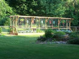 Veggie Garden Ideas Vegetable Garden Fence Ideas Easy Vegetable Garden Ideas Veggie