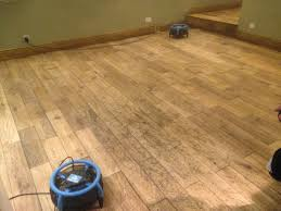 Restoring Hardwood Floors Without Sanding Wood Sanding And Finishing Cambridge Uk Restoring Wood Floors