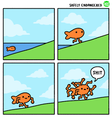 Funny Memes Comic - end your day on a funny note with these 16 random comics funny