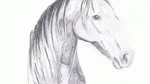 pencil sketches horses drawing pencil