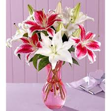 pink lilies 10 pink and white lilies in glass vase myflowergift