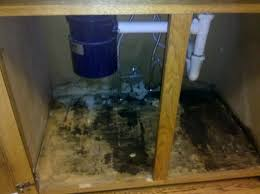 mold under kitchen sink mold under kitchen sink cabinet sink ideas