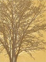 vinyl wall decals tree wall sticker home arts large bodhi tree