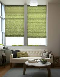 Fabric Blinds For Windows Ideas Green Fabric Blinds Shades The Patterned Flat Panel Shades
