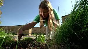 spring gardening chickasaw tv