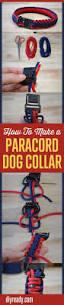 best 25 pet craft ideas on pinterest diy will baby door