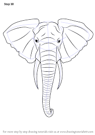 elephant learn to draw animals drawings pinterest draw