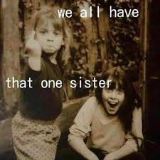 Sister Memes Funny - we all have that one sister memes and comics