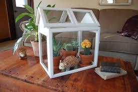 living room like magic decorative terrarium in creative design