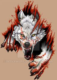 arctic wolf by novawuff on deviantart