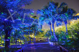 Landscape Laser Light Landscape Laser Lights Plan Ideas Home Design Ideas