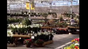 missouri native plant nursery heartland nursery kc mo youtube