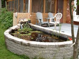 Backyard Ponds And Fountains Best 25 Goldfish Pond Ideas On Pinterest Pond Fountains Pond