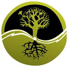 free illustration root tree logo clip free image on