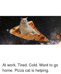Funny Cold Meme - at work tired cold want to go home pizza cat is helping cats