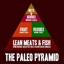 what is the paleo diet food list program workshop ets