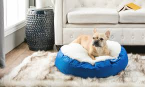 Burrowing Dog Bed How To Choose A Pet Bed For An Older Dog Overstock Com