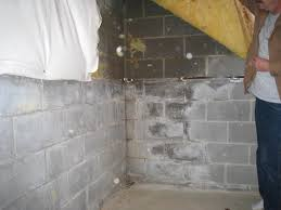 damp basement in holland mi everdry grand rapids