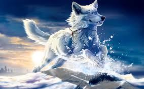 husky puppy wallpaper other wallpaper better