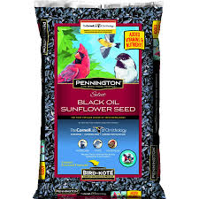 pennington select black oil sunflower seed wild bird feed 40 lbs