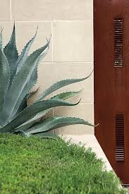 Succulent And Cacti Pictures Gallery Garden Design Succulent And Cacti Pictures Gallery Garden Design