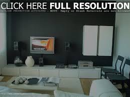 interior decoration ideas for living room dgmagnets com